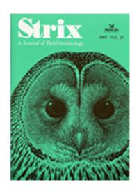 Strix26