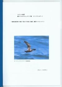 2010umidori1