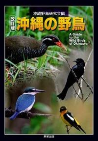 Okinawanoyachou20101