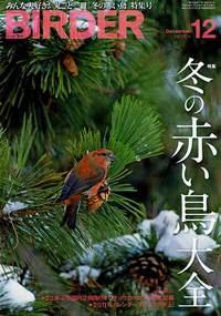 Birder2010121_2