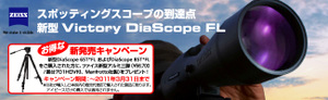 Diascopecampe
