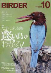 Birder201110m