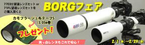 Borg_pagebana