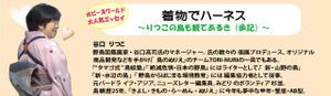 Kimonode_hanes1