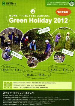 Greenholiday1