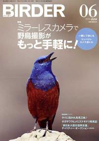 Birder201206