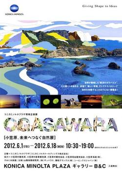 Ogasawaras