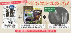 Cover_fair_bana