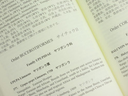 Mokuroku7yatu