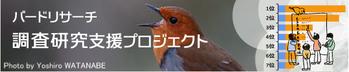 Imgbird_535400_aid1_2