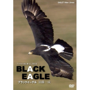 Dvd_blackeagle1_2