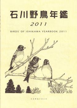 Isikawa2011