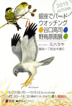 Miharaya