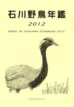 Isikawa2012s