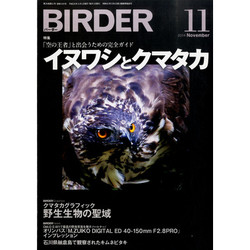 Xbirder201411jpgpagespeedic89eoknkw