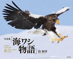 Umiwashi_cover