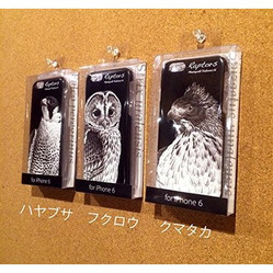 Iphone6case_2
