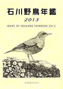 Isikawa2013