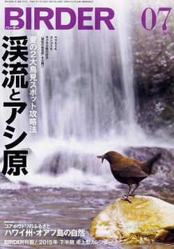 201507birder