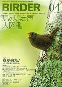 Birder2017_4_2