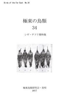 Kyokutou34s_2