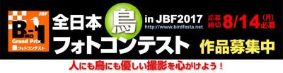 Jbfb1