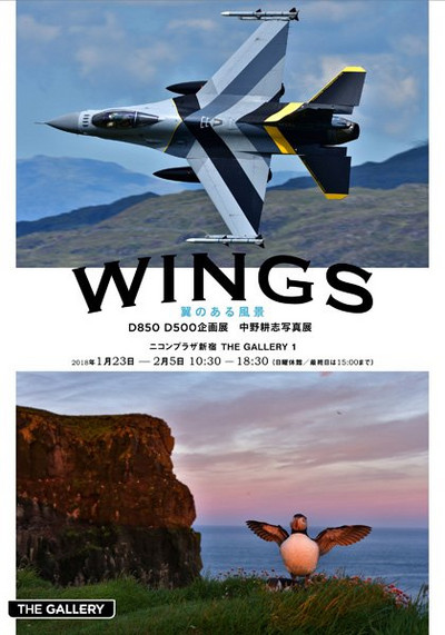 Wings01
