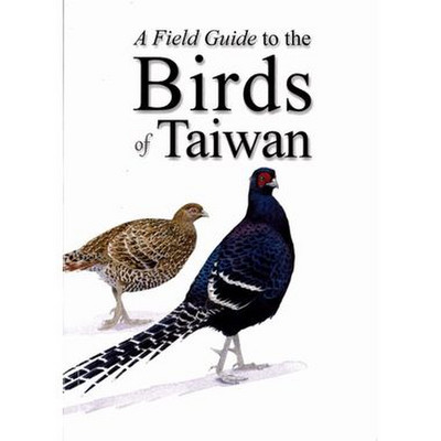 Xtaiwan1_jpg_pagespeed_ic_mvzk3w4iq