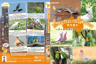 Kingdomofparrot2