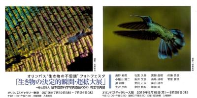 Photo_20190711195801
