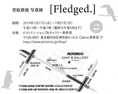 Tsugawarasan_2trim