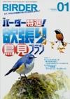 Birder20111s