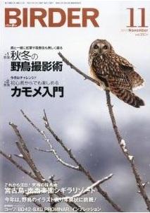Birder2013_112