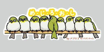 Mejiroosi