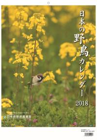 Jspb2018_hyosi_2