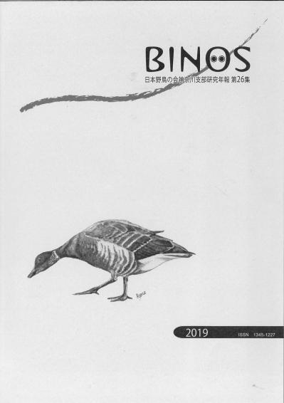 Binos26