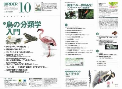 Birder10