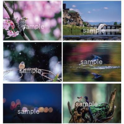 Bsetsample_20200723090801
