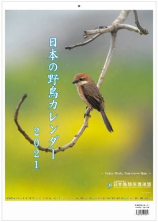 Calender2021_hyoshiwaku
