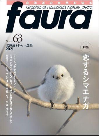 Faura63