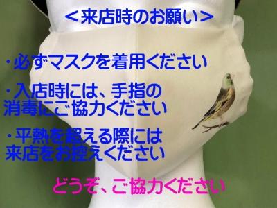 Img_8215r