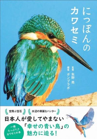 Nipponnnokawasemi
