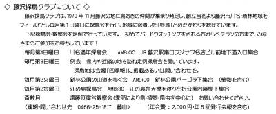 Photo_20200730181601