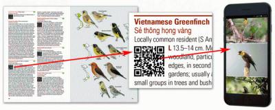Qr_vietnam_20200829162301