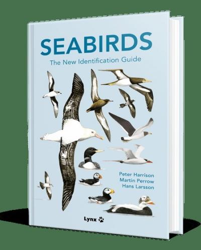Seabirds3d1500px