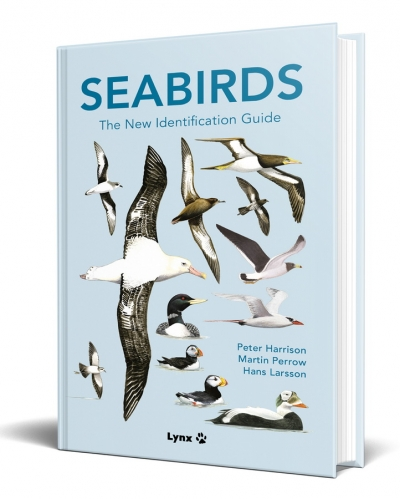 Seabirds3d1500px_2