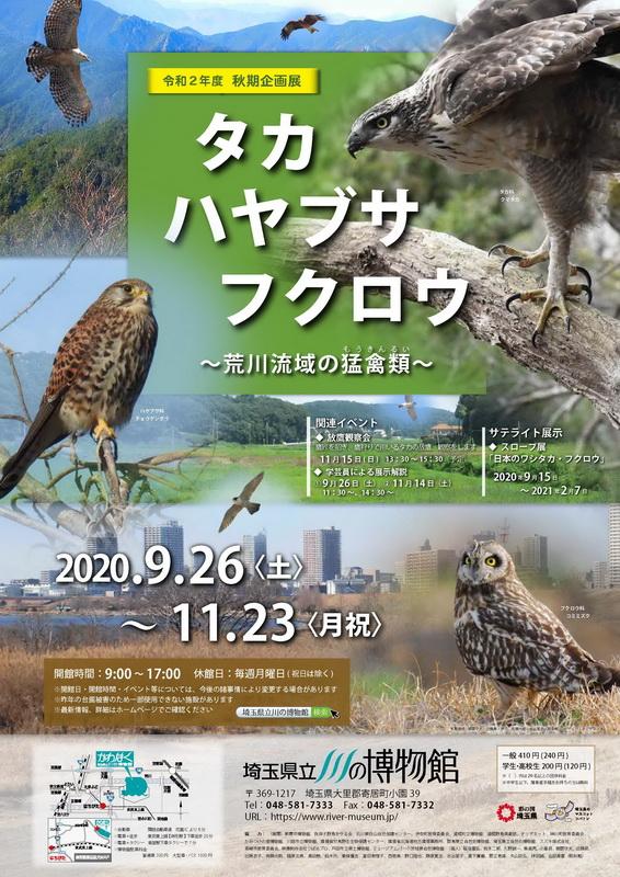 かわはくの企画展示「タカ・ハヤブサ・フクロウ ~荒川流域の猛禽類 ...